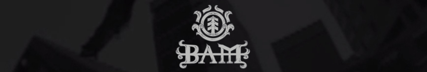 Bam Margera X Element